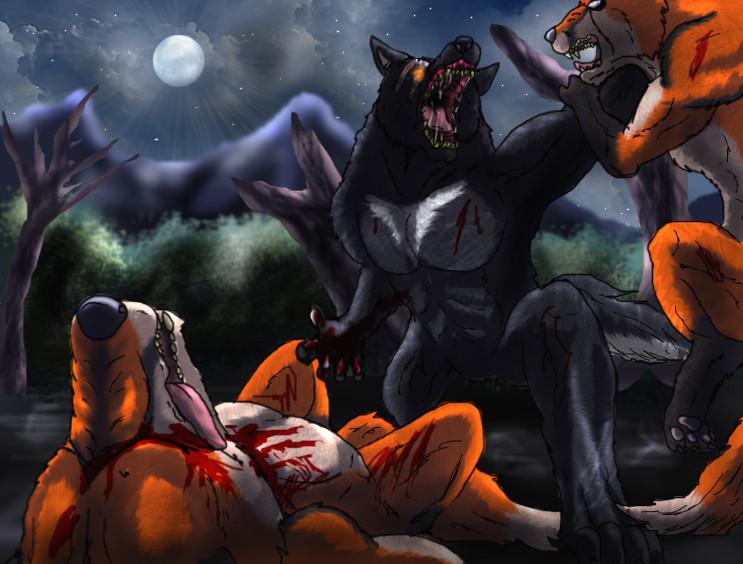 werewolf vs werefox by tai91 on deviantart
