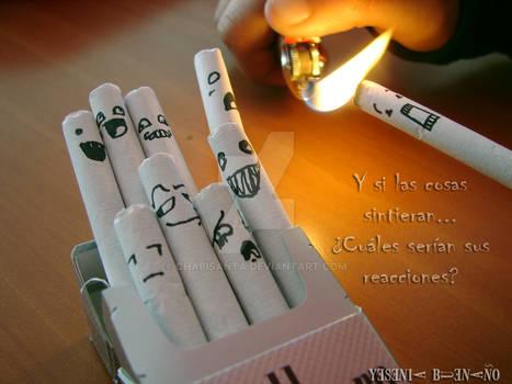 my cigarette box