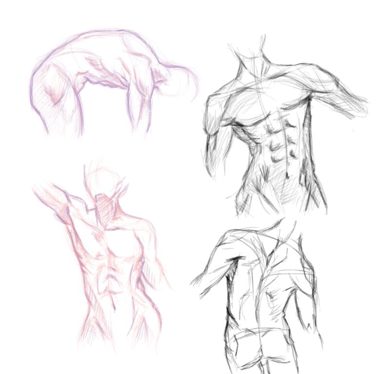 Body Parts... Sketches By Chapisanta On DeviantArt