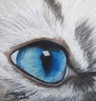 Baby Blue Eye by Farawaywithin