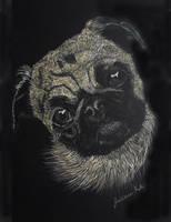 The Pug's Curiosity by Farawaywithin