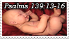 Bible Stamp Contest by Miya902