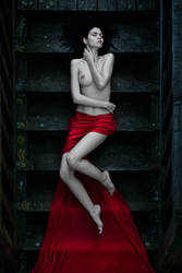 True Blood by idaniphotography