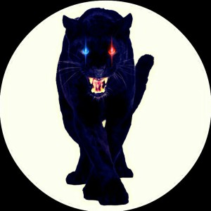 crazypanther7's Profile Picture