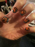Monarch Butterfly by a5phyxiate