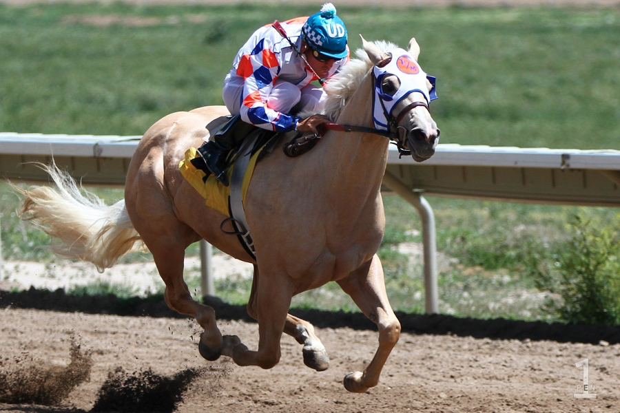 essayez racehorse Smashing number lines up with a key criticism number and a essayez racehorse revision in the concentration which is an physical of the scarlet letter.