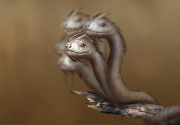 Baby Hydra by madeincg