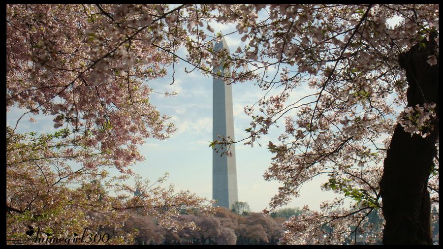 Monumental by Animegirl300