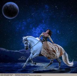 Cosmo Stallion