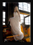 Trash The Dress V