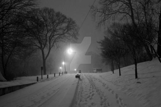 Greenway At Night