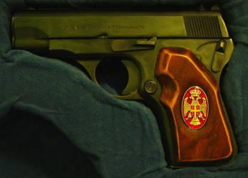 Pistol handles 3