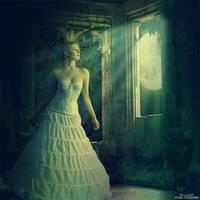 .: Serenade of dreams :. by Pure-Poison89