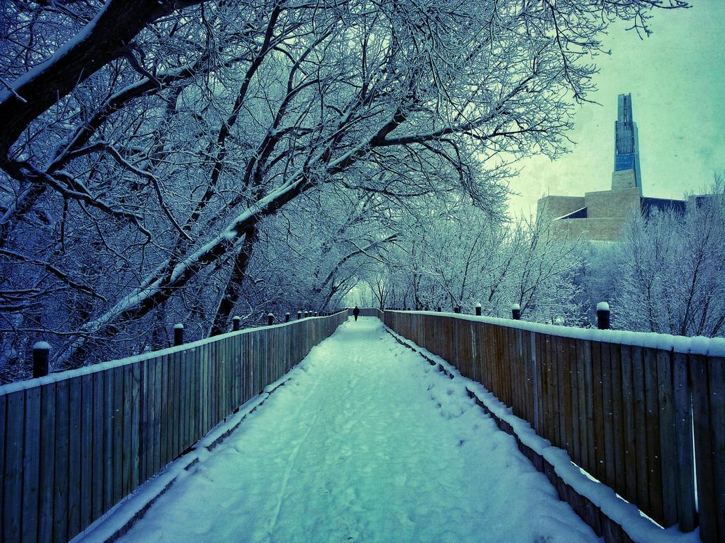 Hoarfrost Walking Path by BenRogersWPG