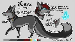 James | Ref 2020~