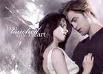 Bella and Edward: Touched