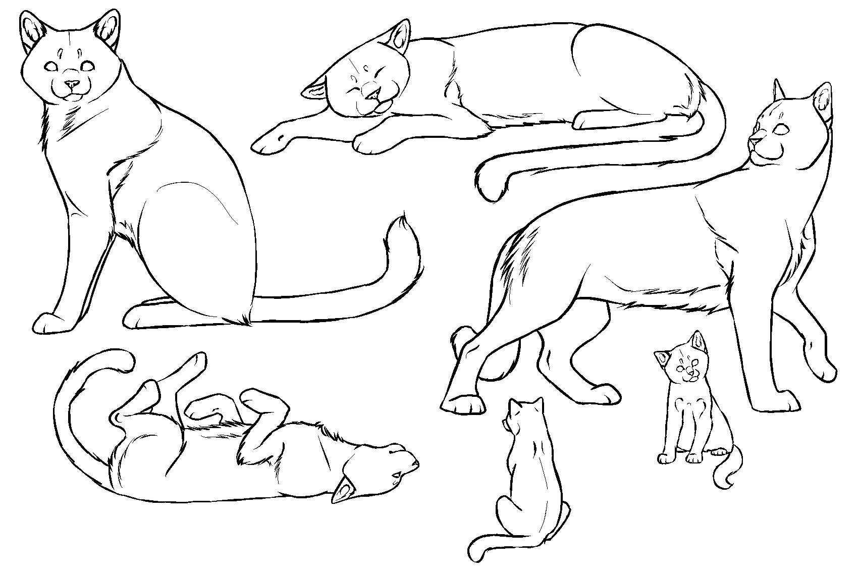 Cat Lineart : Free cat lineart paint friendly by dikkebobby on deviantart