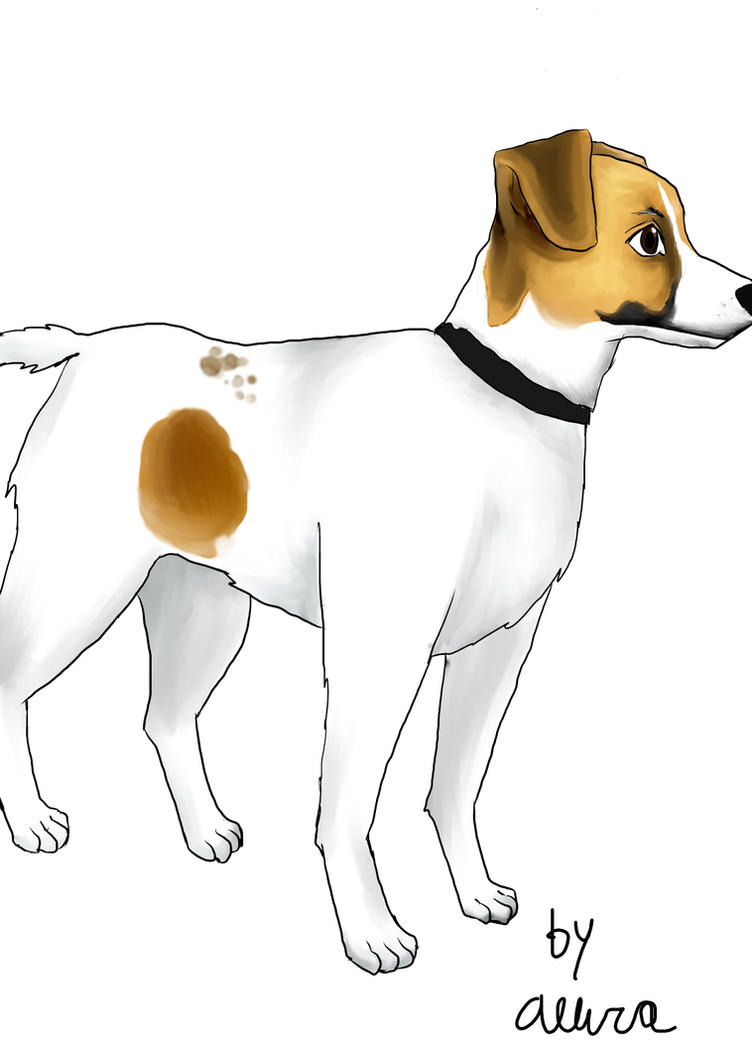 Jack Russell Terrier by TheArtgrrl