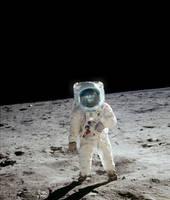 Astronaut Gorilla by dancpicturez