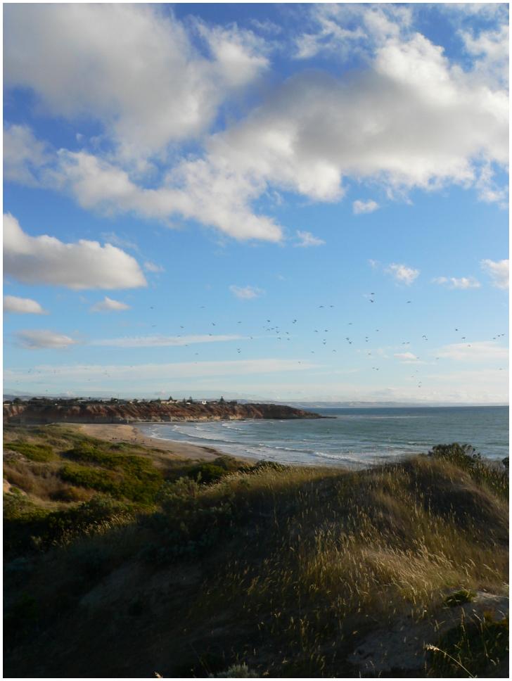 Coastal Scene by capsicum