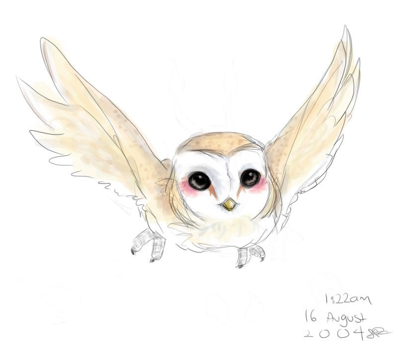 Barn Owl by capsicum on DeviantArt