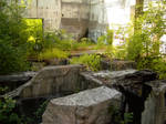 Factory Ruin 12