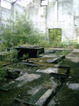 Factory Ruin 22