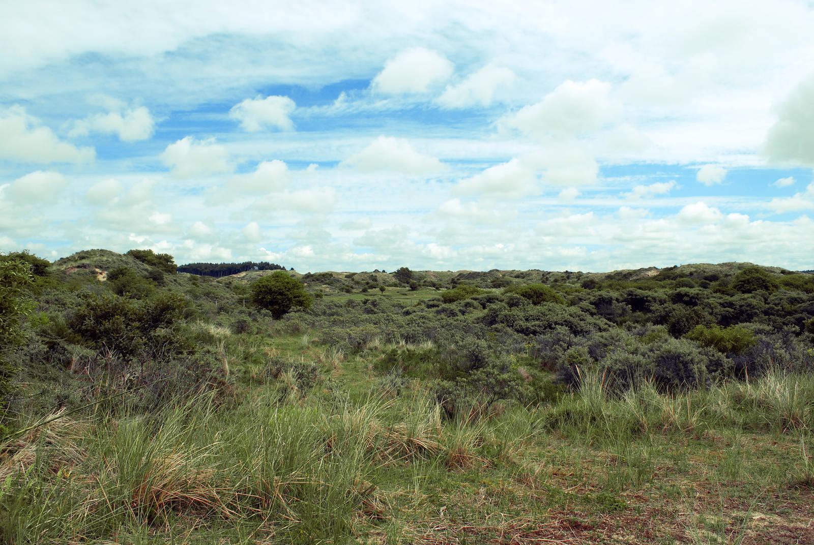 Dunes Stock 3 by Sed-rah-Stock