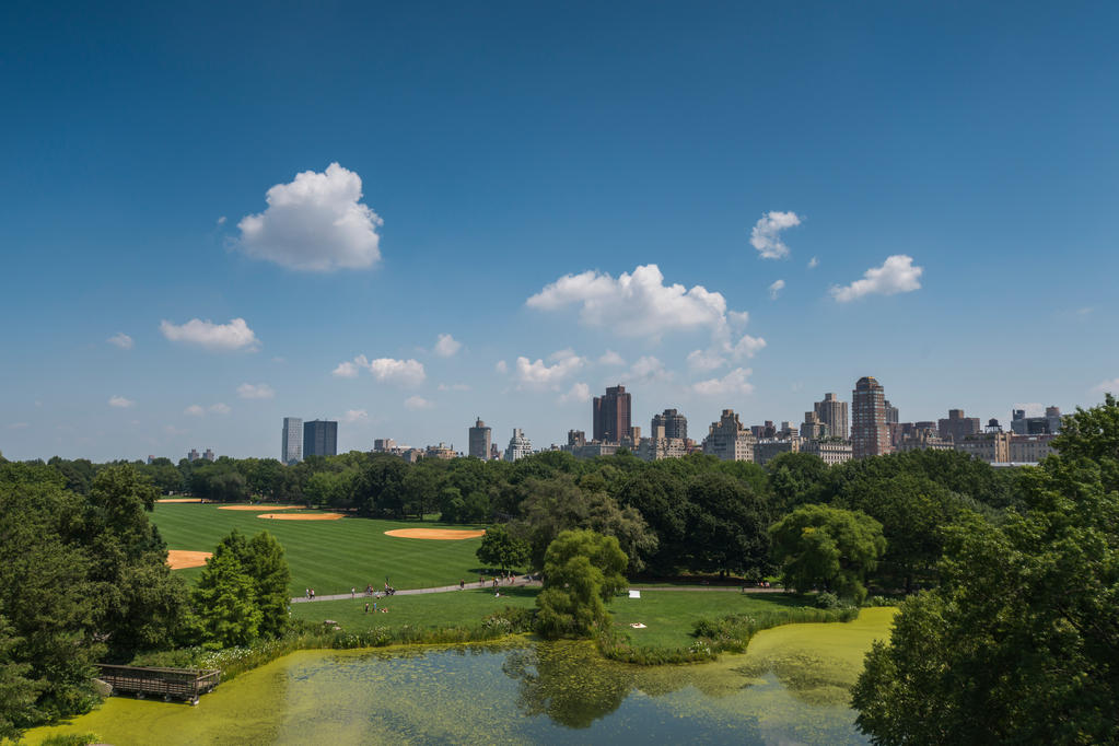 Central Park View by kbrimson