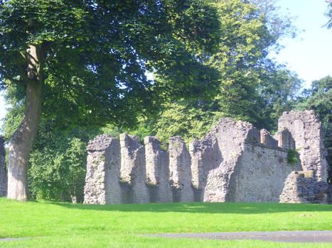 Priory Ruins, Birmingham