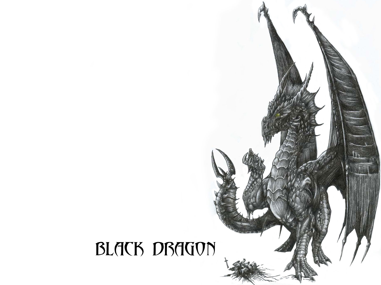 Wallpaper Black Dragon By Alphonsecapone On Deviantart