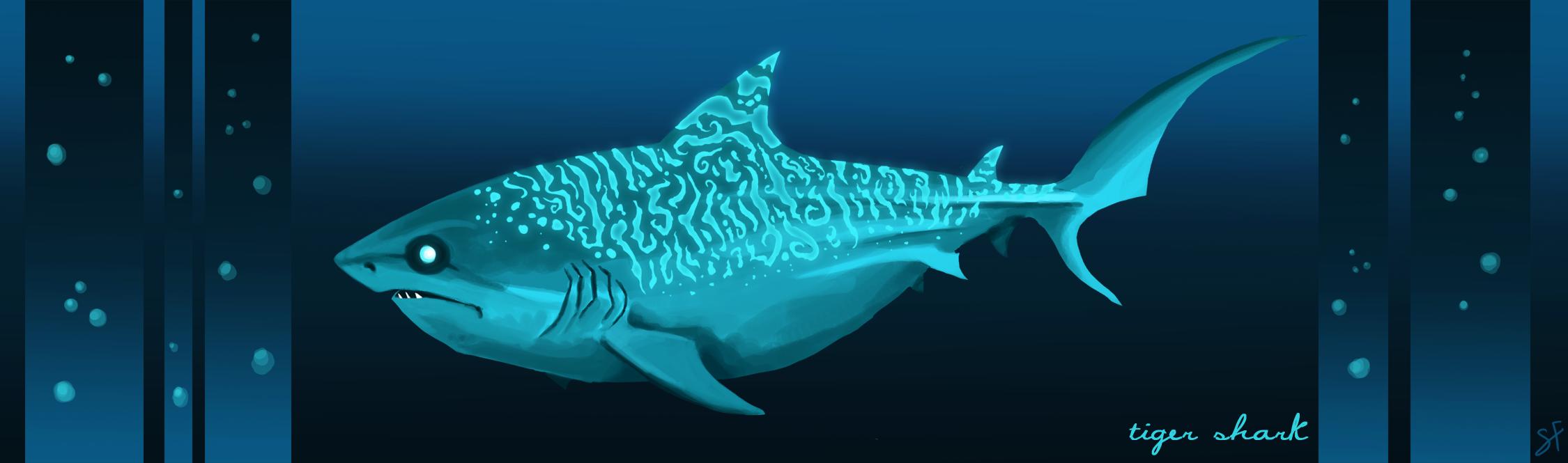 Shark Week Day 1 By Tea Tiger On Deviantart Eye Diagram Brittlebear Love Gallery