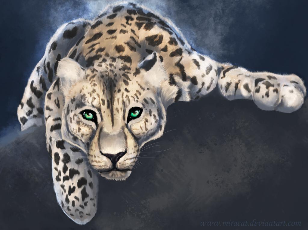 Leopard by Miracat