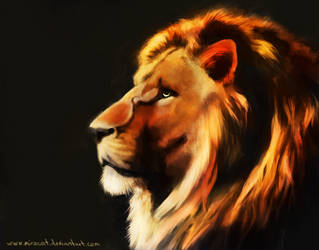 The Lion 4 by Miracat