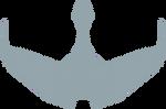 Klingon Bird of Prey logo