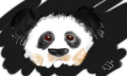 Dirty Panda by Uj-Ju