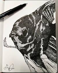 Angelfish, low-key pointillism! by Uj-Ju