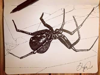 Black Widow, low-key pointillism! by Uj-Ju