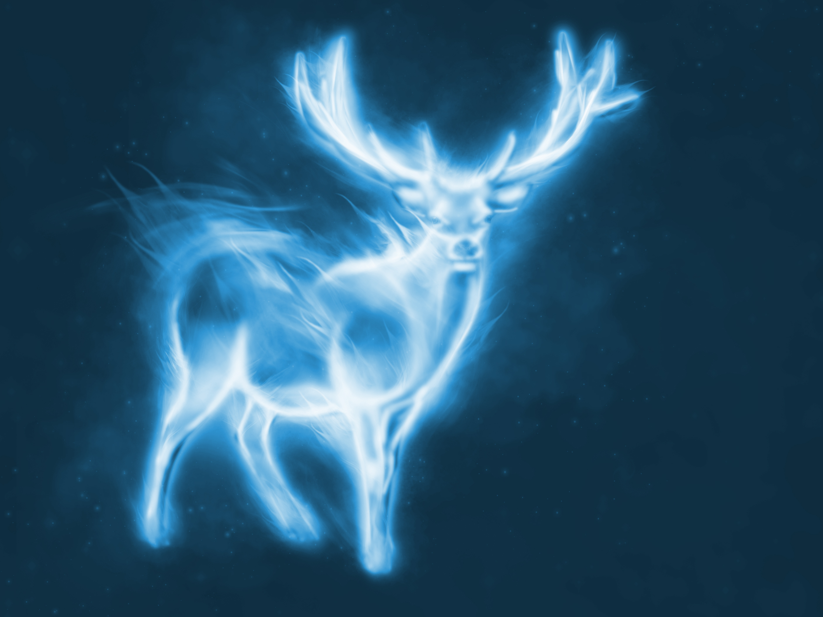 what form does your patronus take take the quiz and find