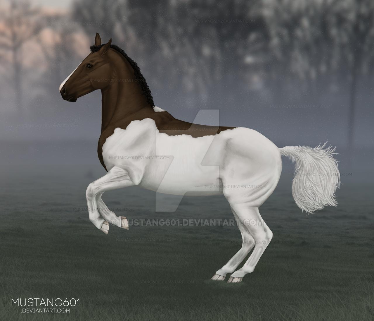 [Speedpaint] Isselandria by Mustang601