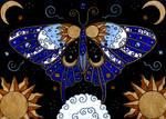 Celestialfly2