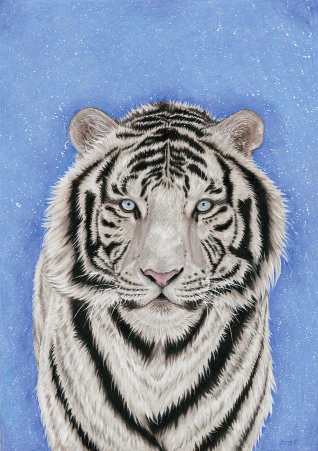 White tiger by ArunaWolf
