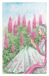 Floralfeb - Lupine