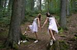 Ballet: Entering the forest 1