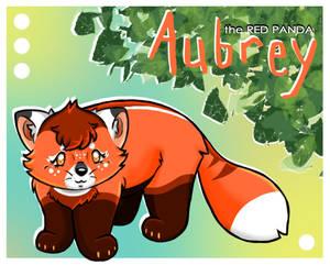 Aubrey the Red Panda