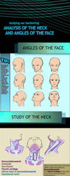 Tutorial -Neck anatomy and face angles- by GlitchMix