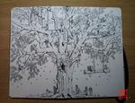 Moleskine Doodle-Amazzonia