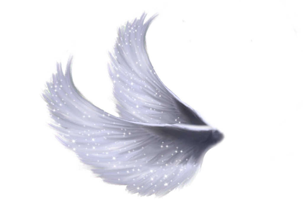 Angel Wings Png New Calendar Template Site