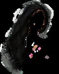 Png Hair 2