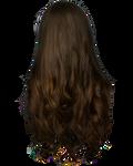 Png Hair 5